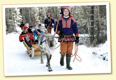 santa s reindeer in lapland santa s reindeer names santa s lapland