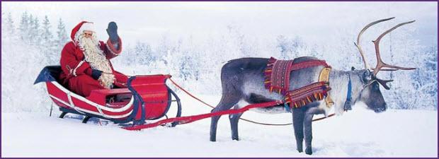 santa reindeer.jpg