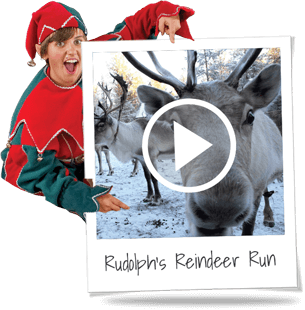 reindeer-run (2).png