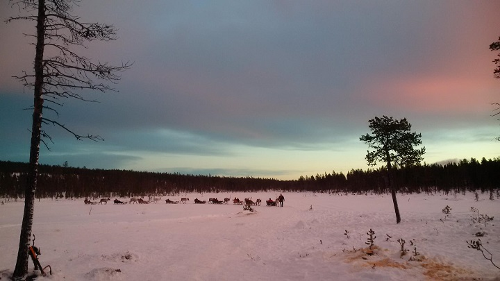 8 things you didnt know about lapland santas lapland experience the natural wonder of lapland for yourself check out our availability here solutioingenieria Gallery